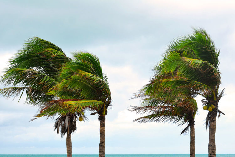 Hurricane Shutters Palm Beach County